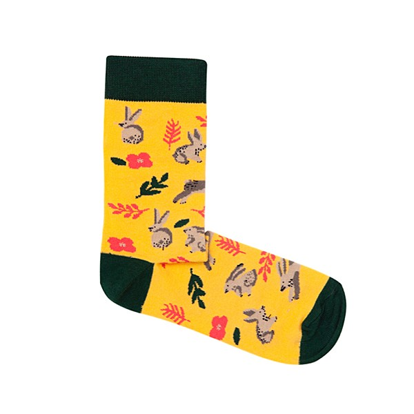 Socks Rabbits